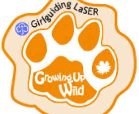 growing up wild orange